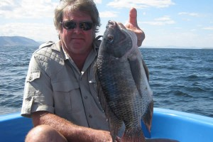Steves big bream